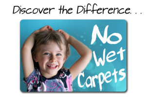 Carpet cleaning Lawrenceville Illinois